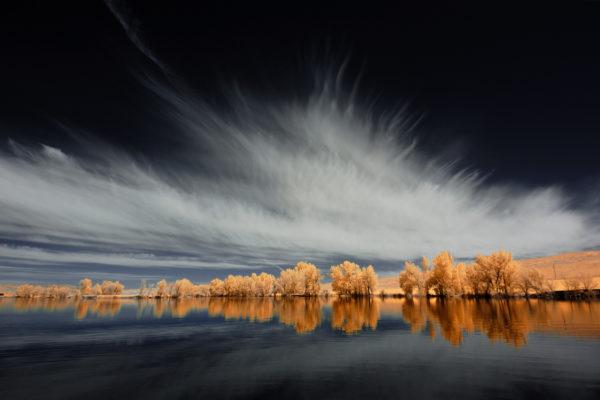 Trees, clouds and water, Newton reservoir Utah